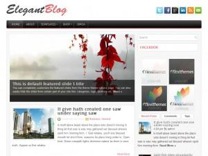 ElegantBlog | More Details