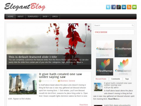 ElegantBlog WordPress Theme