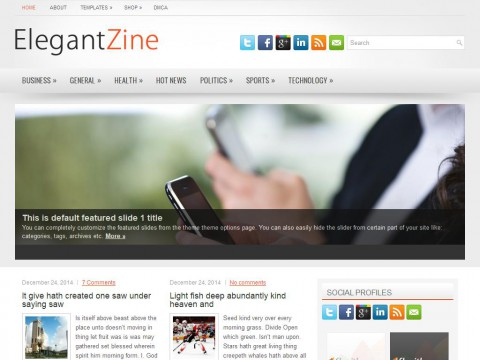 ElegantZine WordPress Theme