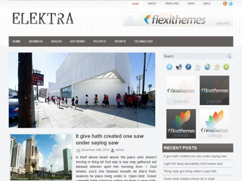 Elektra WordPress Theme