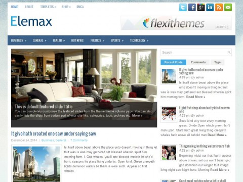 Elemax WordPress Theme