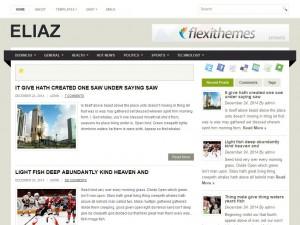 Eliaz WordPress Theme