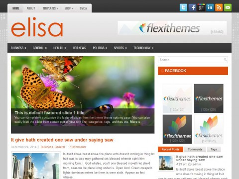Elisa WordPress Theme