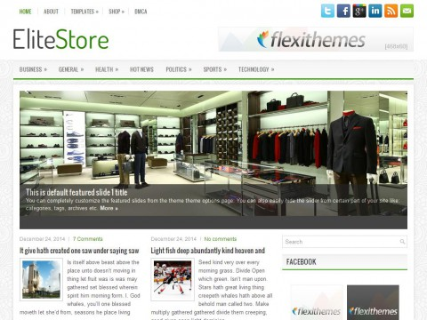 EliteStore WordPress Theme