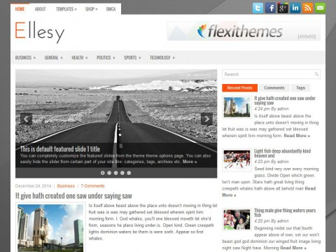 Ellesy WordPress Theme