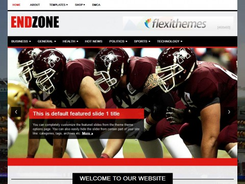 EndZone WordPress Theme