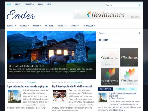 Ender WordPress Theme