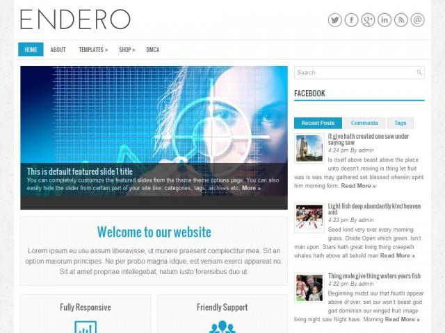 Endero Theme Demo
