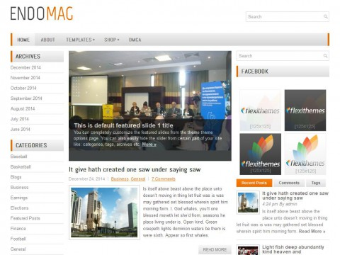 EndoMag WordPress Theme