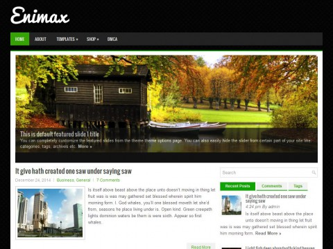 Enimax WordPress Theme