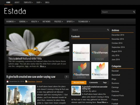 Estada WordPress Theme