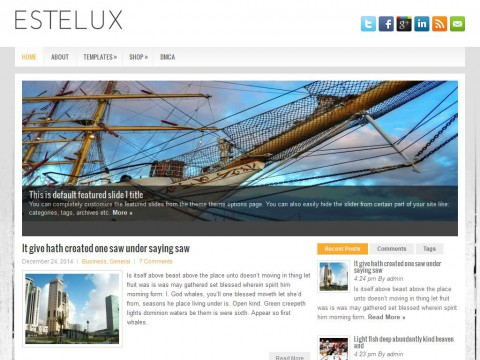 Estelux WordPress Theme