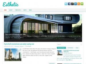 Esthetic | More Details