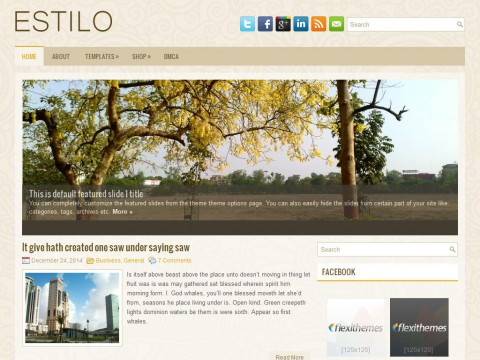 Estilo WordPress Theme