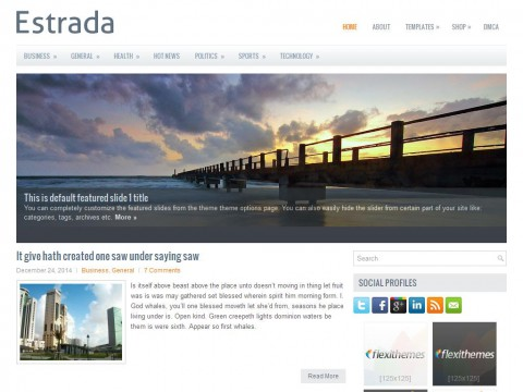 Estrada WordPress Theme