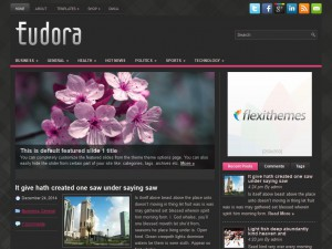 Eudora WordPress Theme