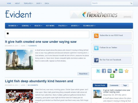 Evident WordPress Theme