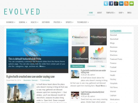 Evolved WordPress Theme