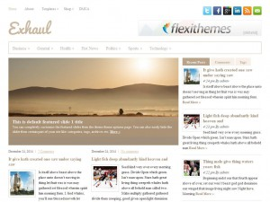 Exhaul WordPress Theme