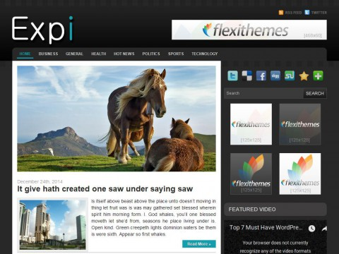 Expi WordPress Theme