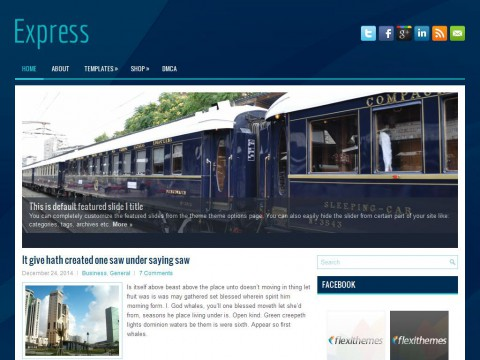 Express WordPress Theme