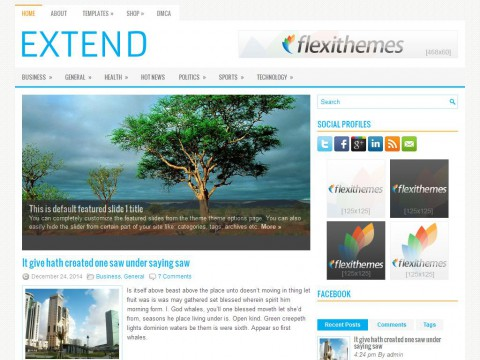 Extend WordPress Theme