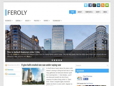 Feroly WordPress Theme