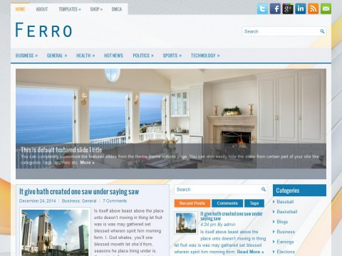 Ferro WordPress Theme