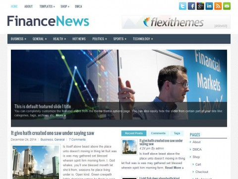 FinanceNews WordPress Theme