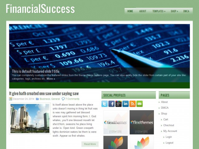 FinancialSuccess Theme Demo