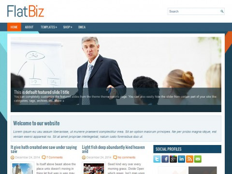 FlatBiz WordPress Theme