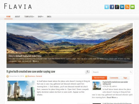 Flavia WordPress Theme