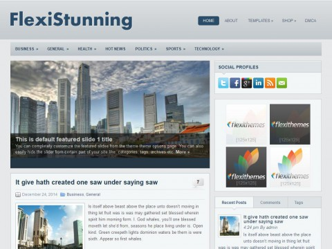 FlexiStunning WordPress Theme
