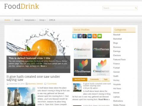 FoodDrink WordPress Theme