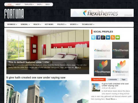 Fortuna WordPress Theme