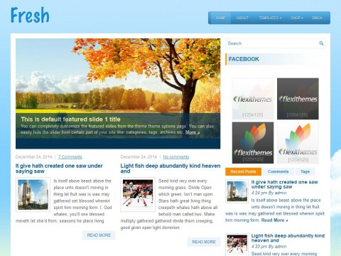 Fresh WordPress Theme