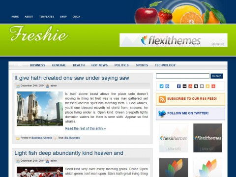 Freshie WordPress Theme