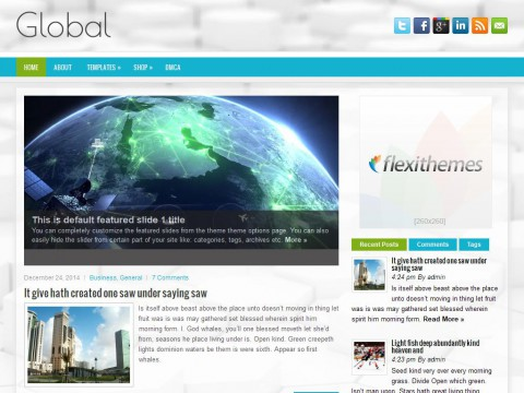 Global WordPress Theme