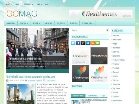 GoMag WordPress Theme