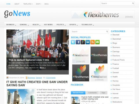 GoNews WordPress Theme