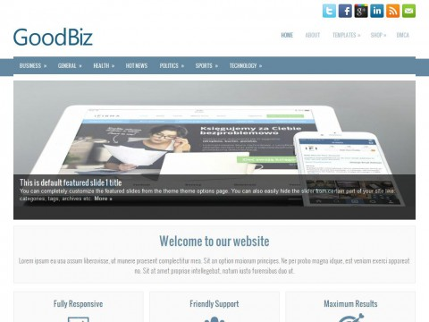 GoodBiz WordPress Theme