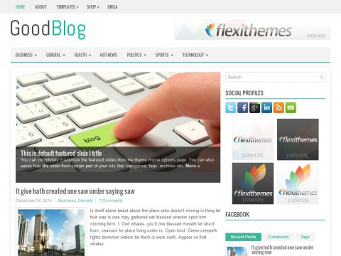 GoodBlog WordPress Theme