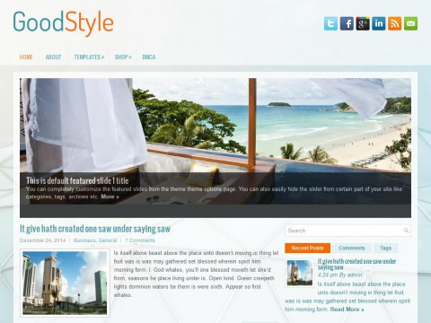 GoodStyle WordPress Theme