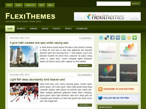 Green Dream WordPress Theme
