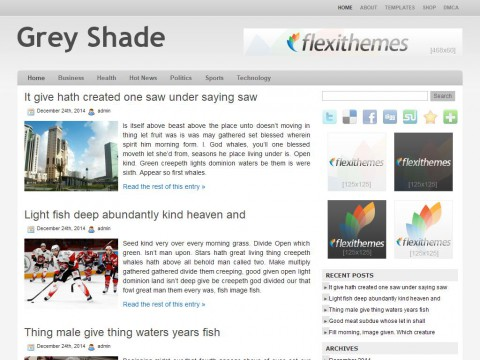 Grey Shade WordPress Theme