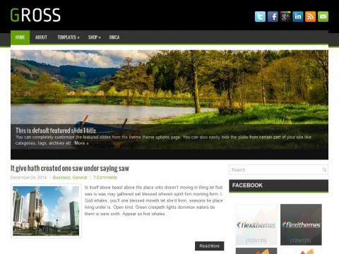 Gross WordPress Theme