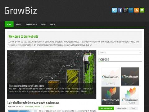 GrowBiz WordPress Theme