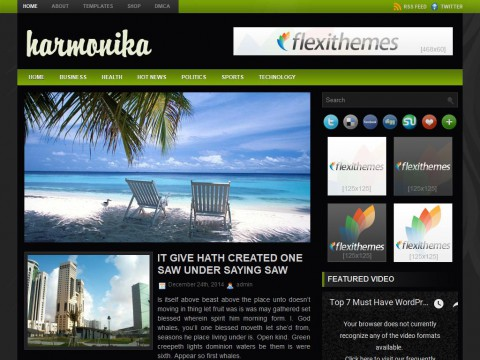 Harmonika WordPress Theme
