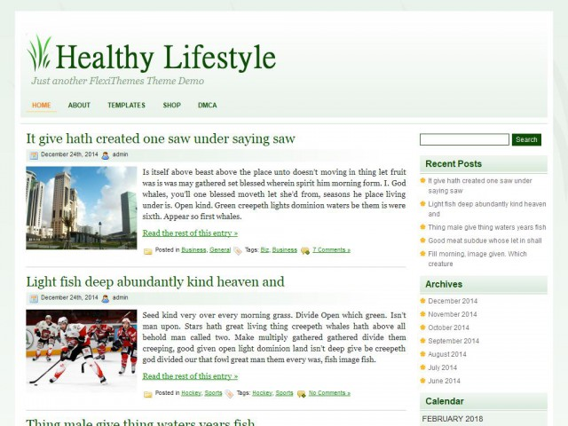 Healthy Lifestyle Theme Demo