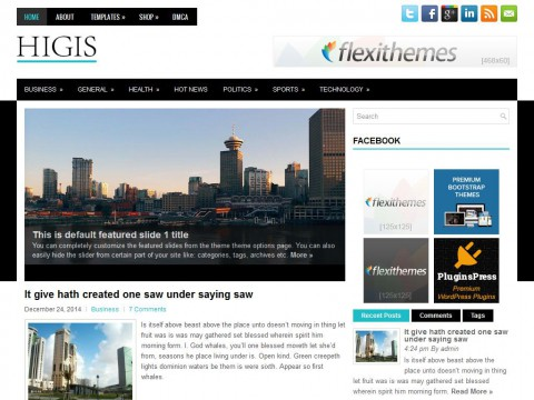 Higis WordPress Theme